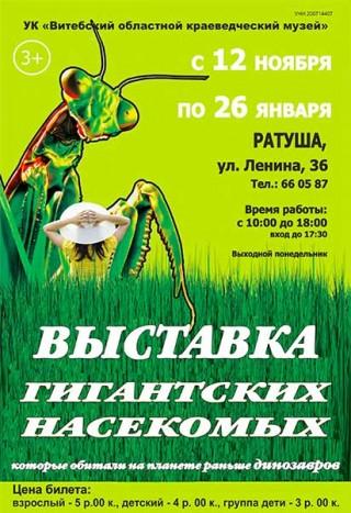 Выставка гигантских насекомых с 12.11.2019 по 26.01.2020 Витебский областной краеведческий музей