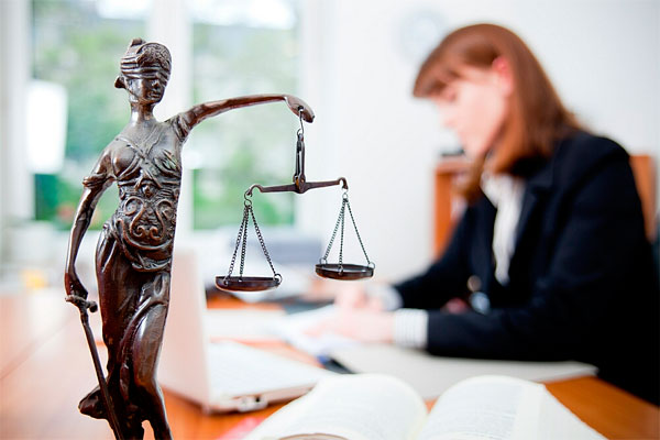 бесплатные юридические онлайн консультации в витебске