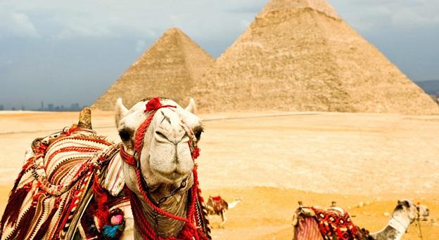 Бронирование египта на новый год