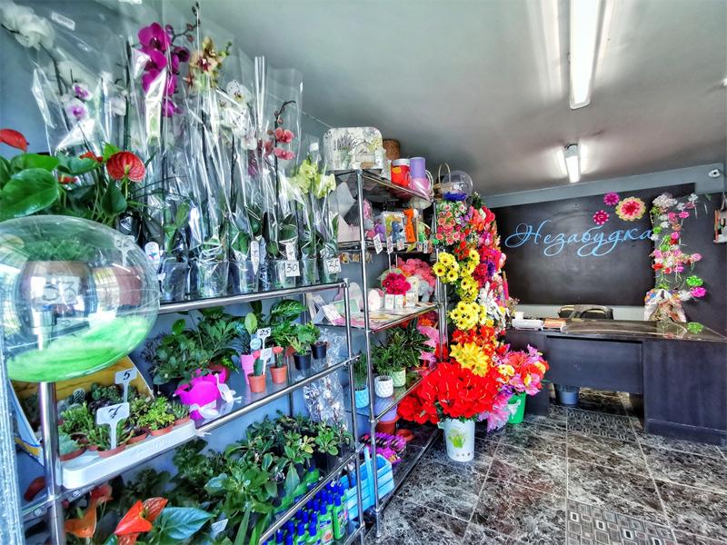 Магазин цветов для дачи витебск ленина