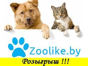 Розыгрыш от интернет-магазина Zoolike.by