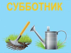 1 апреля в Витебске проведут общегородской субботник